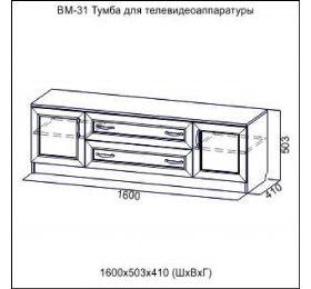 """""""Вега"""" ВМ-31"""